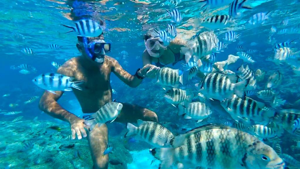 Snorkeling Rangiroa - Passeio Ilhas dos Recifes Rangiroa - Lagoa Cristalina Rangiroa